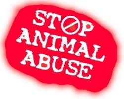 Animal Life, Still a Curse
