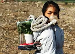 Manipur's  8 year old climate change activist