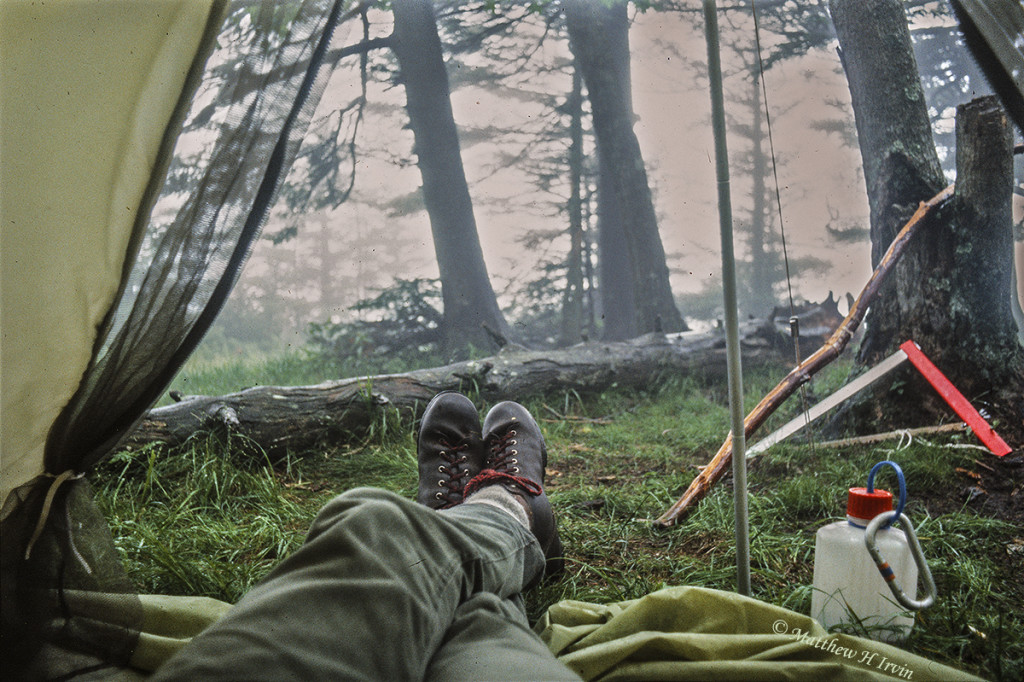 A view from my tent.