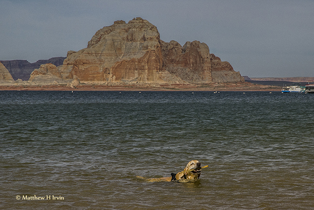 Me swimming at Lake Powell!
