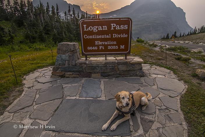 Me at Logan Pass.
