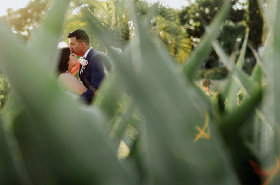 Analysa & Sanjeev's May Wedding