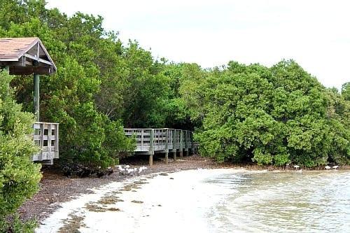 Annes Beach8