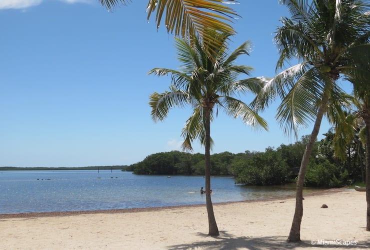 john-pennekamp-state-park-beach