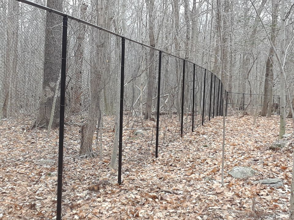 10_ H Black Vinyl Coated Deer Fence