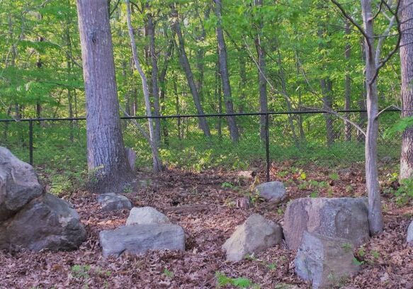 WOODED-AREAS-4-H-Black-Chain-Link-In-Wooded-Area-1024x408