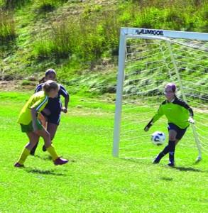 Nashoba FC's Allie scores against Lusitana FC on Sunday.                   Courtesy