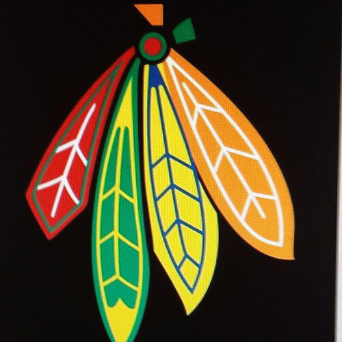 Feathers from the Chicago Blackhawks Logo