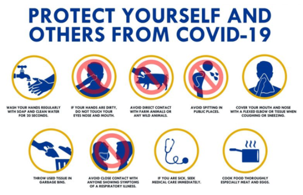 Safety Corner –  Coronavirus: What We Know and What We Can Do