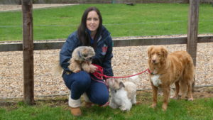 Becky Wood and Dogs