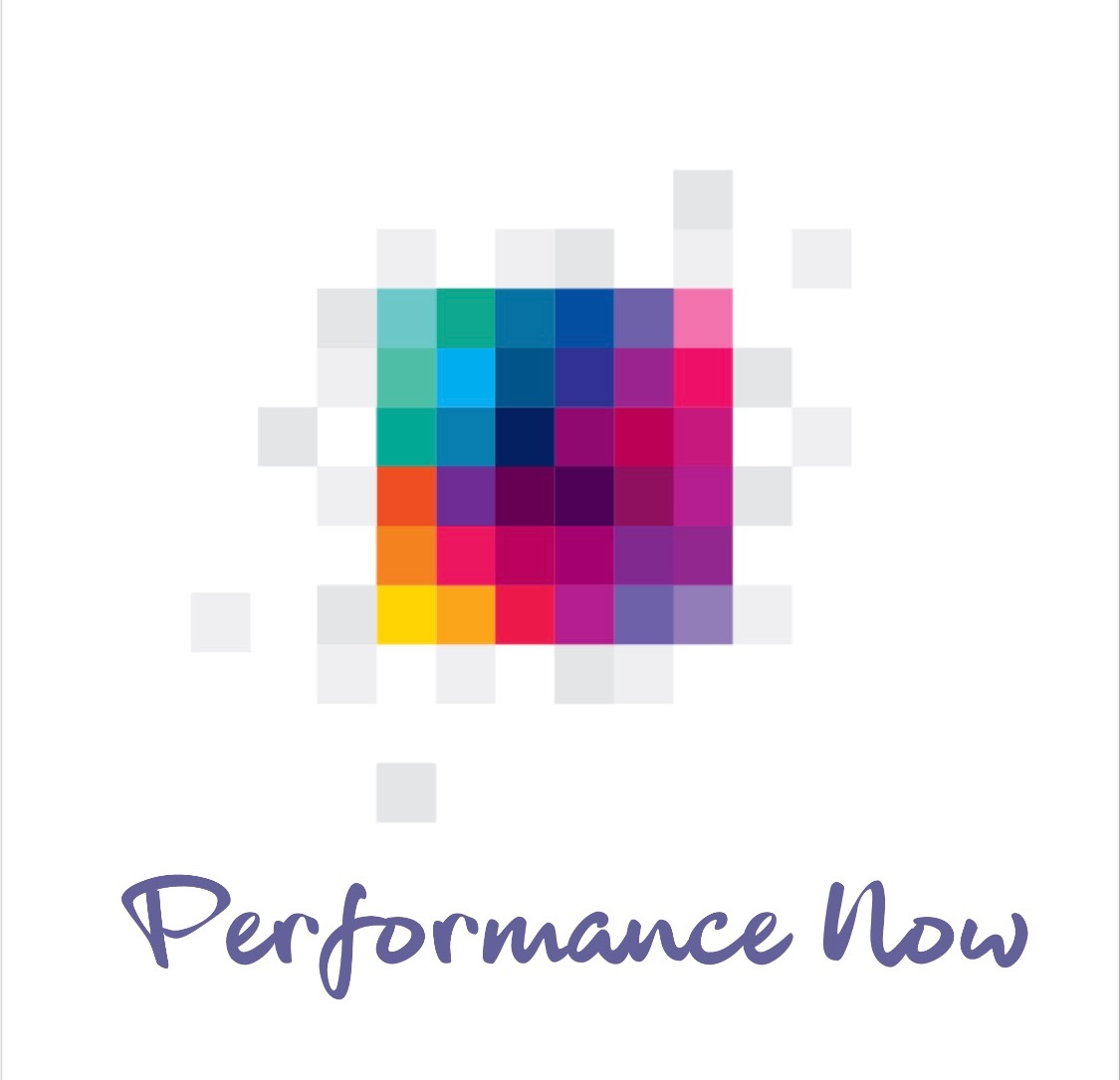 PERFORMANCE NOW LLC
