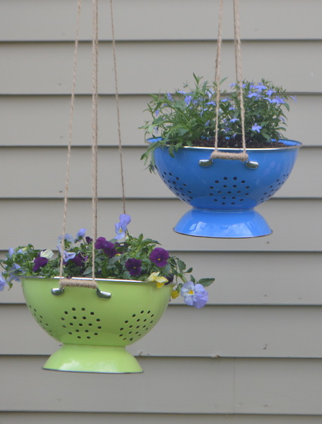 Hanging plants in colorful colanders