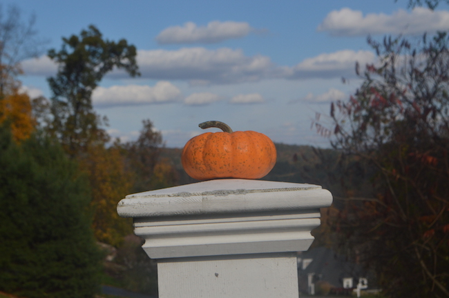 Pumpkin on the post