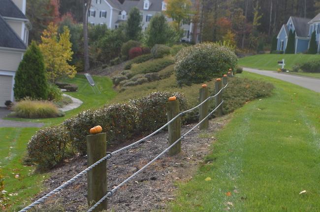 pumpkins on the guardrail