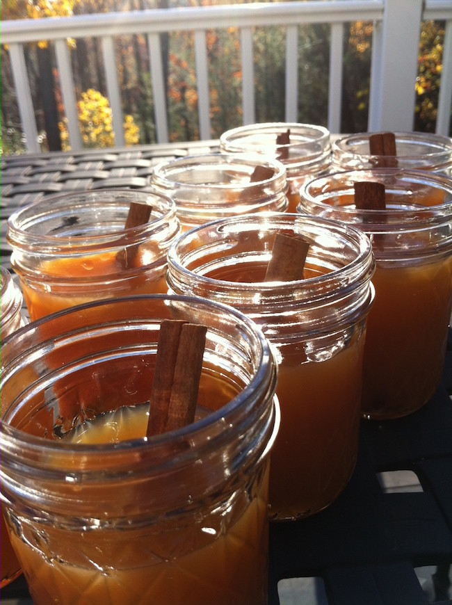 Hot Cider with Cinnamon Sticks on the Deck