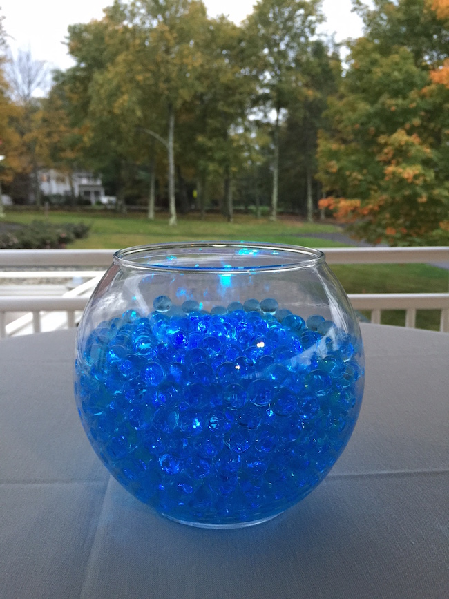 Dolphin Themed Bat Mitzvah Party