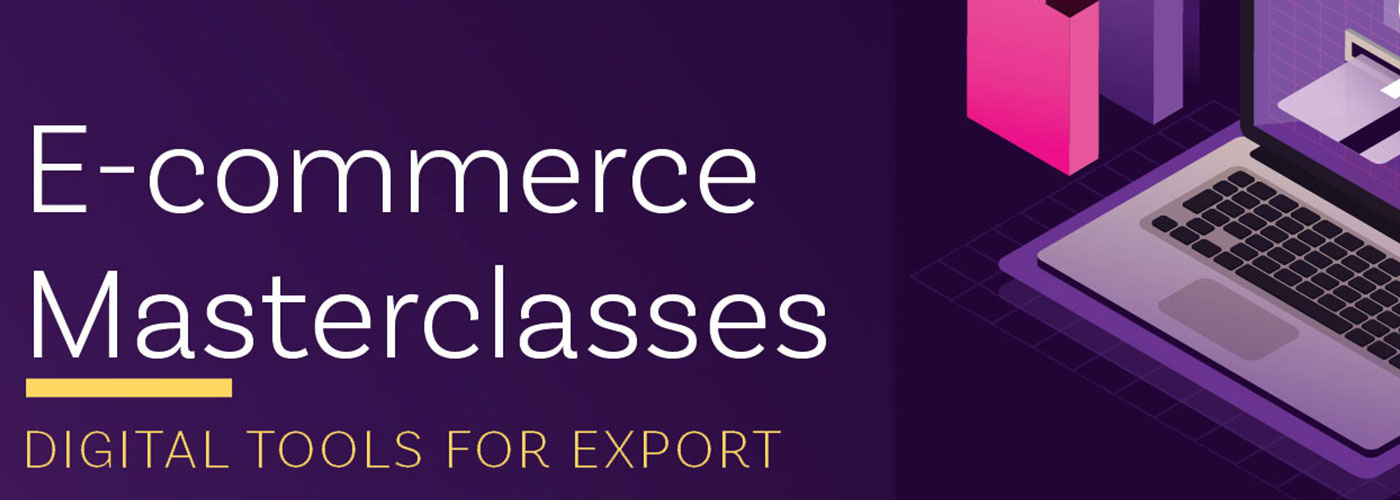 E-commerce Masterclass program