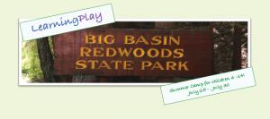 Big Basin Trifold-2-1