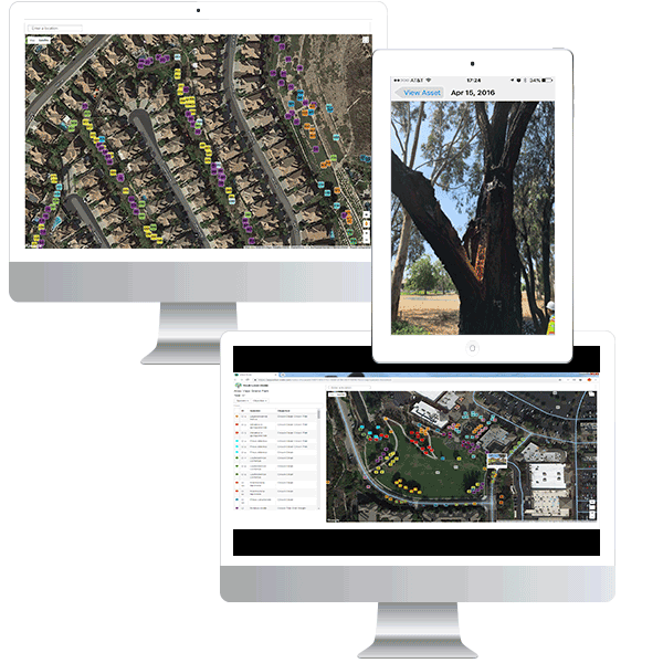 images of ArborNote in action on various devices