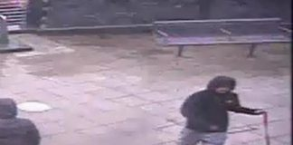 Dog bites a four-year-old boy and drags him along the ground