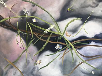 Missouri Wildflowers by Lil Olive