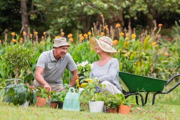Portable Oxygen in garden