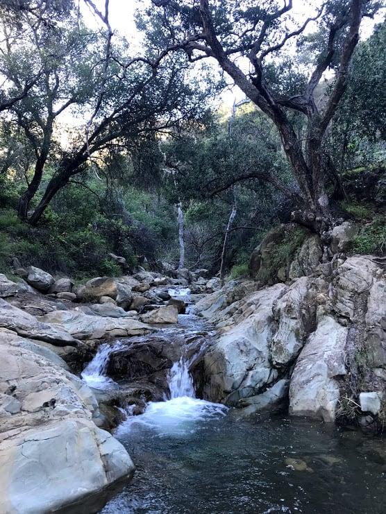 creek on the way to Inspiration Point Santa Barbara