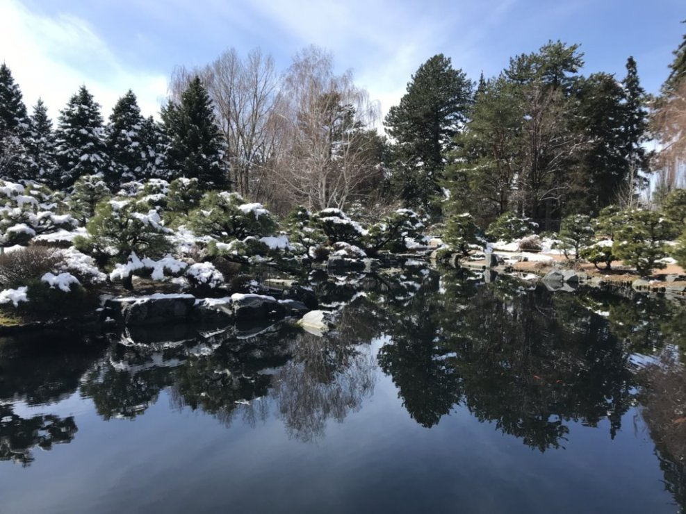 a snow covered view of the Japanese gardens with their reflecting pond