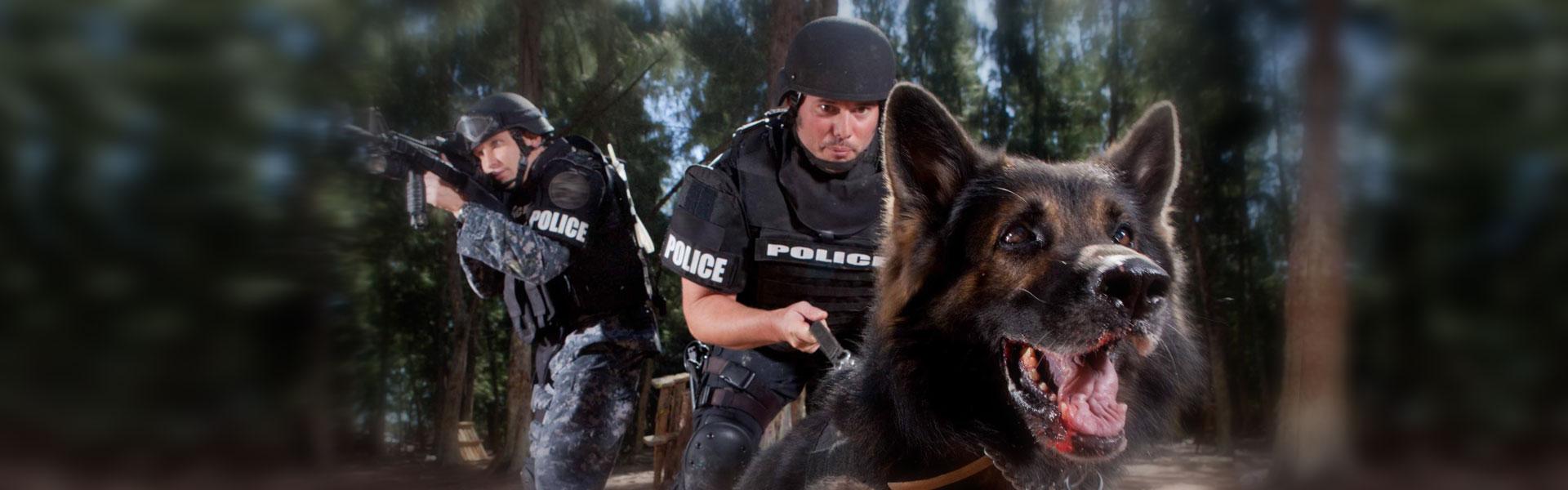 front-banner-police-dog.jpg
