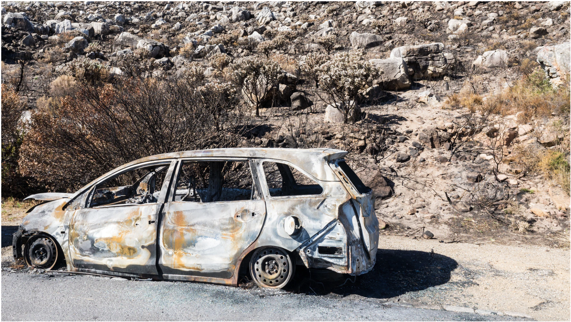 buy wrecked cars
