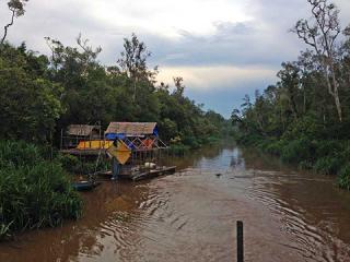 Sekonyer River, Borneo