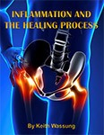 bookcover-inflamation-healing-process