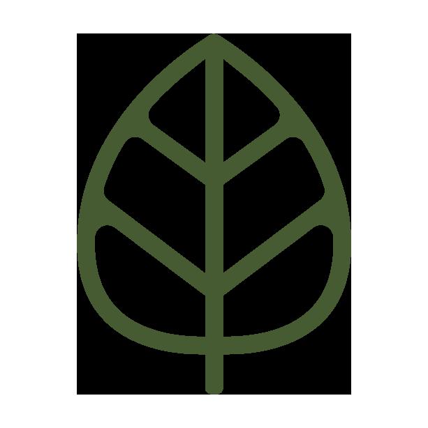 Bison Botanics