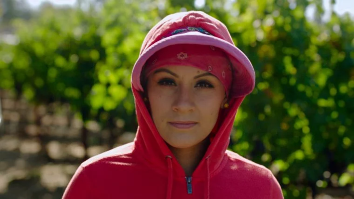 Review: 'Harvest Season' Documentary Portrays the Latinos Behind the Wine Labels