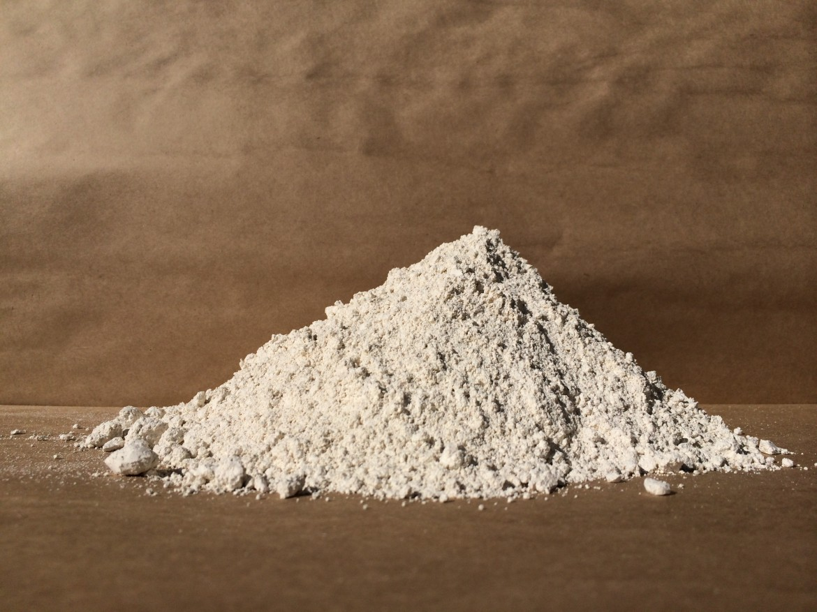 What You Need to Know About Diatomaceous Earth