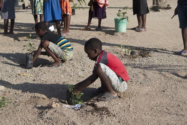 Determined to Develop School Children Assist with Reforestation Project 4