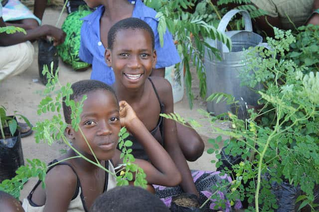Determined to Develop School Children Assist with Reforestation Project 6