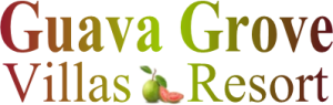 Welcome to Guava Grove Villas | Roatan Honduras.