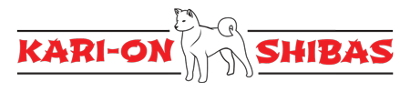 Kari On Shiba Inus & Bengal Cats