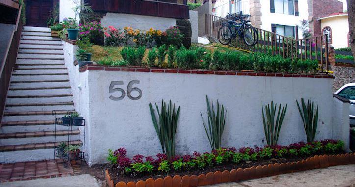 Plantas y flores en la entrad