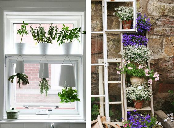Decoración con plantas con flor originales