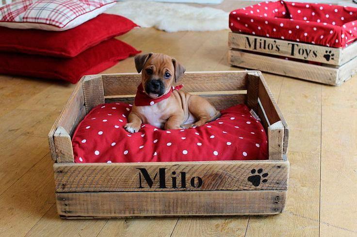 Una pequeña cama para el cachorro
