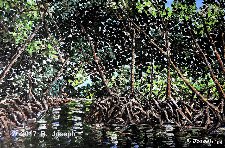Mangrove-Caroni Swamp