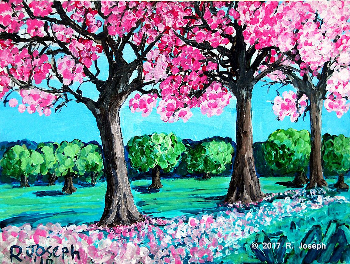 Pink Poui-Queen's Park Savannah