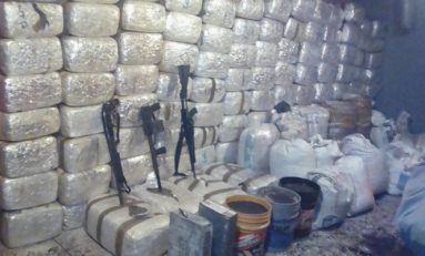 Decomisa Ejerecito marihuana y armas en Madera