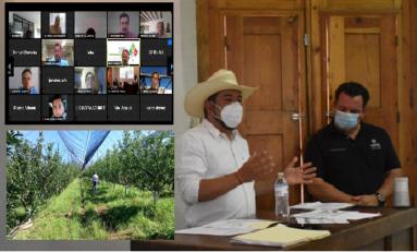 Crean Asociación Agrícola Local de Productores de Nuez de Chihuahua AALPRONUEZ