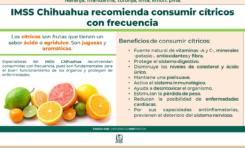 Exhorta IMSS a consumir cítricos en esta temporada