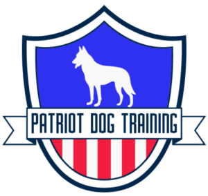 dog training san antonio doggy daycare canine training obedience training bulverde austin pet boarding