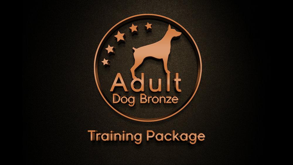 San Antonio Dog Training Austin Doggy Daycare Bulverde Dog Boarding Boerne Canine Obedience Training New Braunfels Dog Trainers