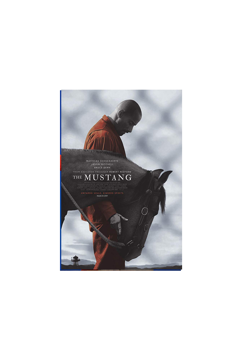 </br>The Mustang